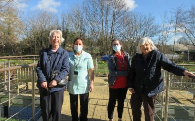 Farnham Mill goes green