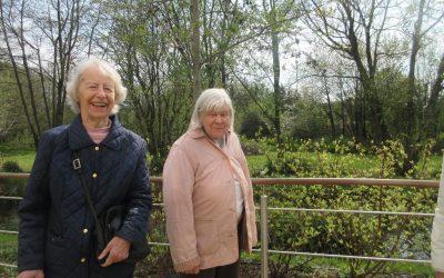 Spring garden week at Farnham Mill
