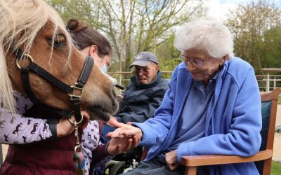 Growing up with animals here at Farnham Mill
